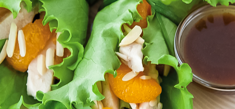 13309 asian lettuce wraps
